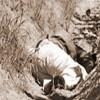 Sigue la mata dando: ejecutan a joven en El Consuelo