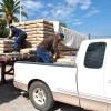 Avanza entrega de cemento subsidiado