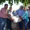 Inicia entrega de maíz rolado subsidiado por Gobierno del Estado