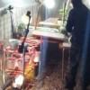 Desmantelan invernadero de amapola en Cuauhtémoc