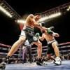 Funge como juez de box diputado Miguel La Torre