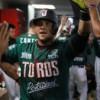 Ganan el primero Toros a Pericos de Puebla