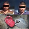 Continúan los robos de nuez en la región; detienen a dos