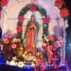 Inician peregrinaciones en honor de la virgen morena
