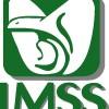 Resultado de imagen para logo del imss